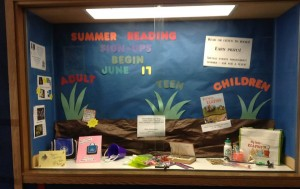 Summer Reading Display Case - Olean Public Library